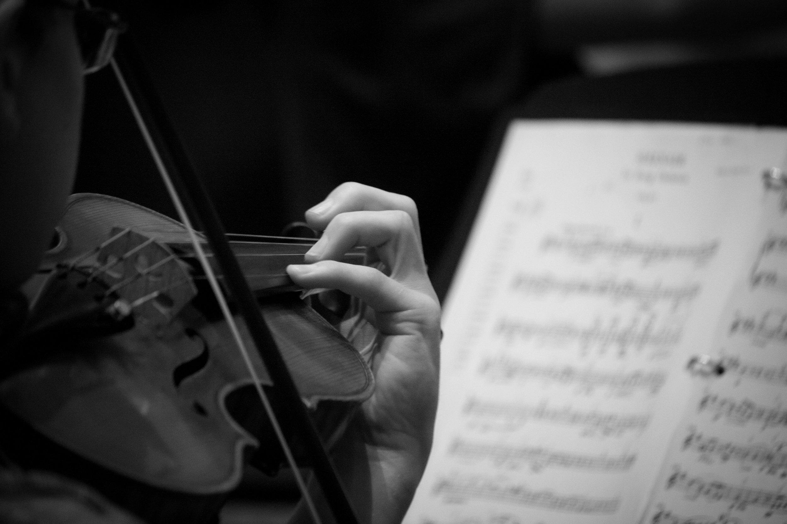 greyscale violin.jpg