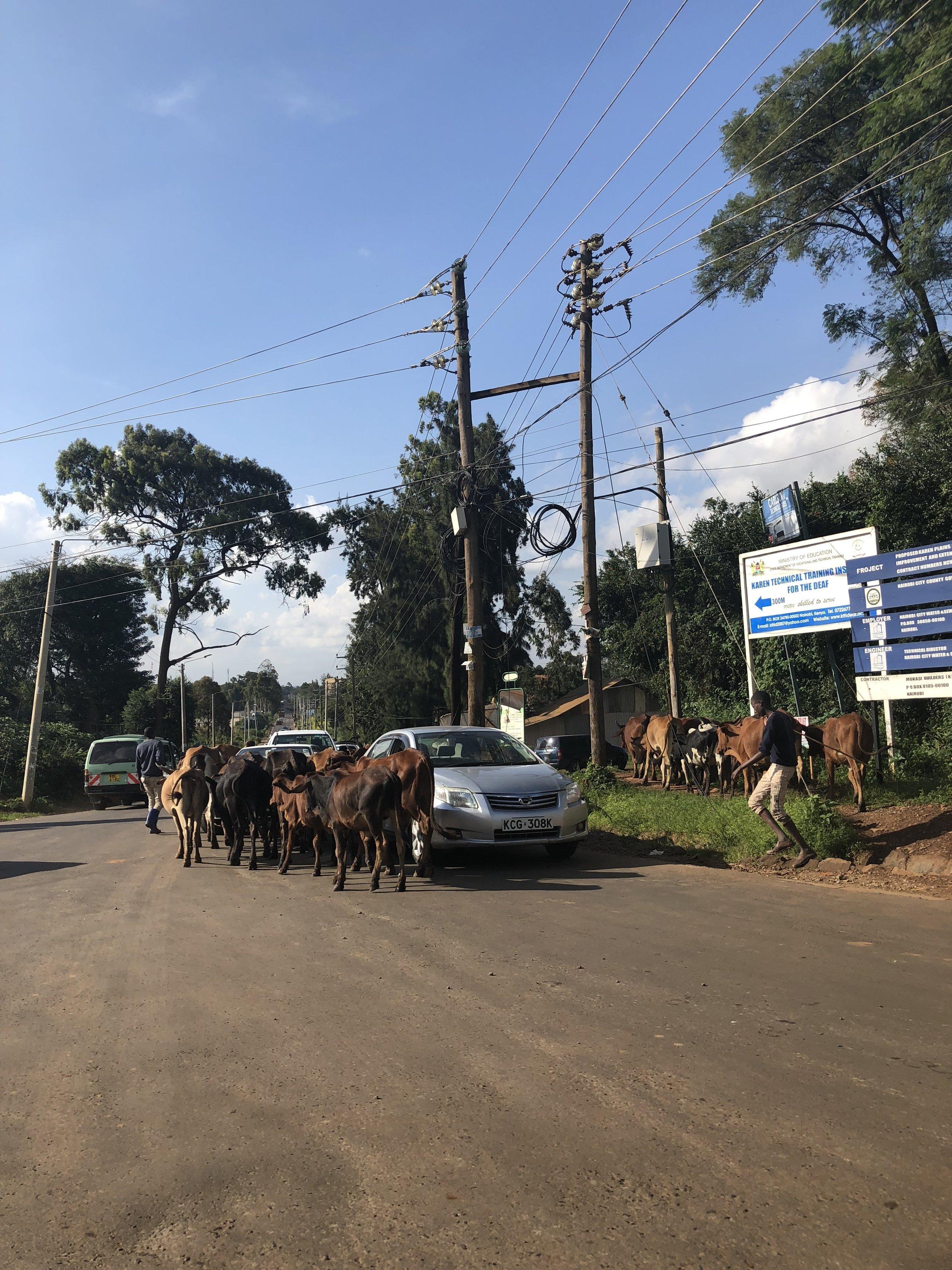 Karen, Nairobi, Kenya