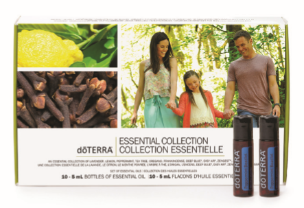 - Essentials Collection Kit (CDN $185)