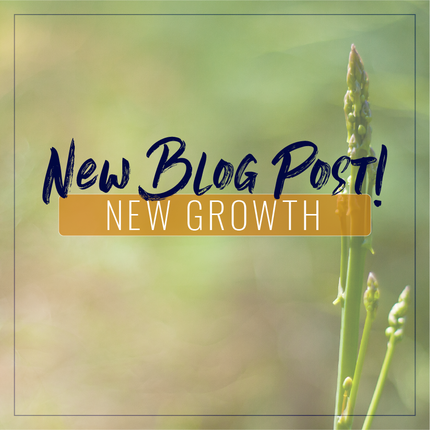 New Growth Blog Post Instagram-01.png