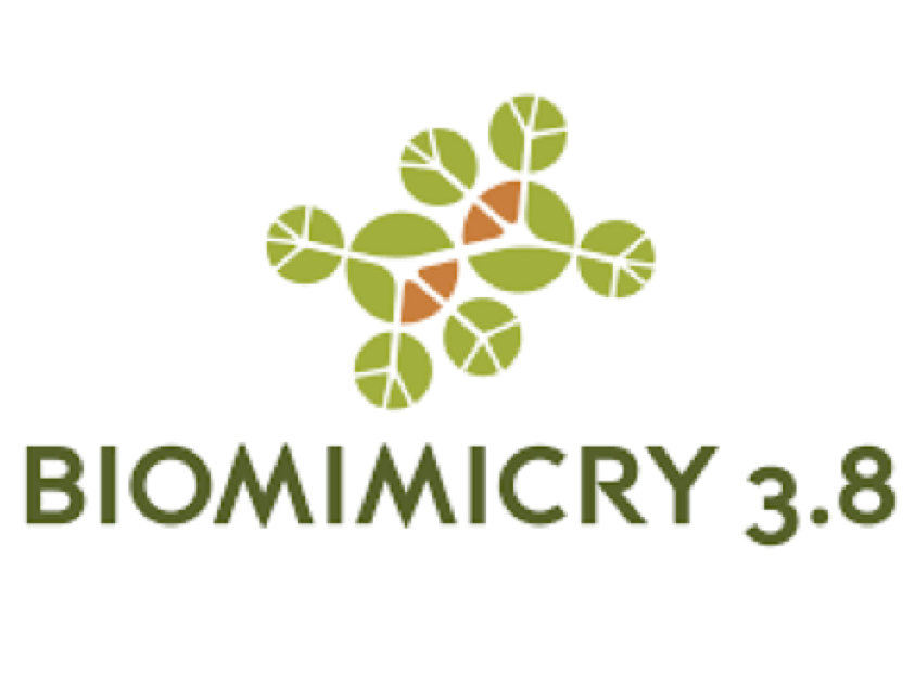 Biomimicry 3.8.png