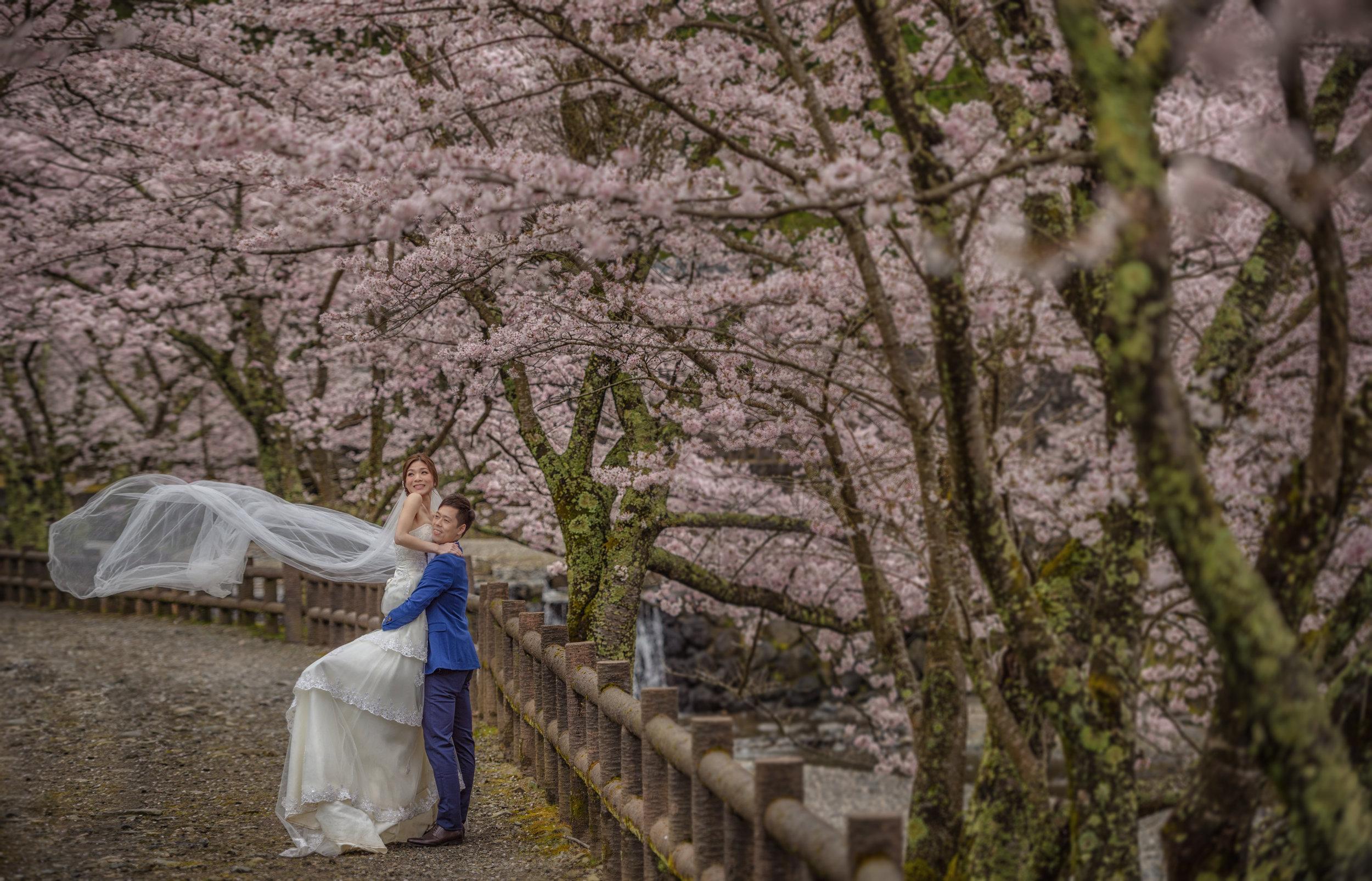 www.st-photography.net-10.jpg