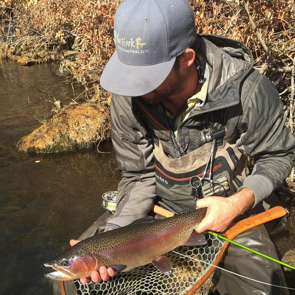 Mega rainbows swim around in Putah Creek.  They are not easily fooled.  Learn how to be a technical angler and you will be rewarded here.
