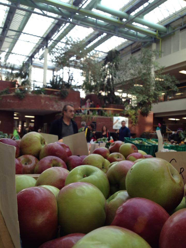 winter market 2014 apples.jpg