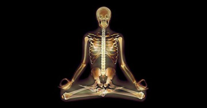 Neuroscience-Yoga-Featureo-720x377.jpg