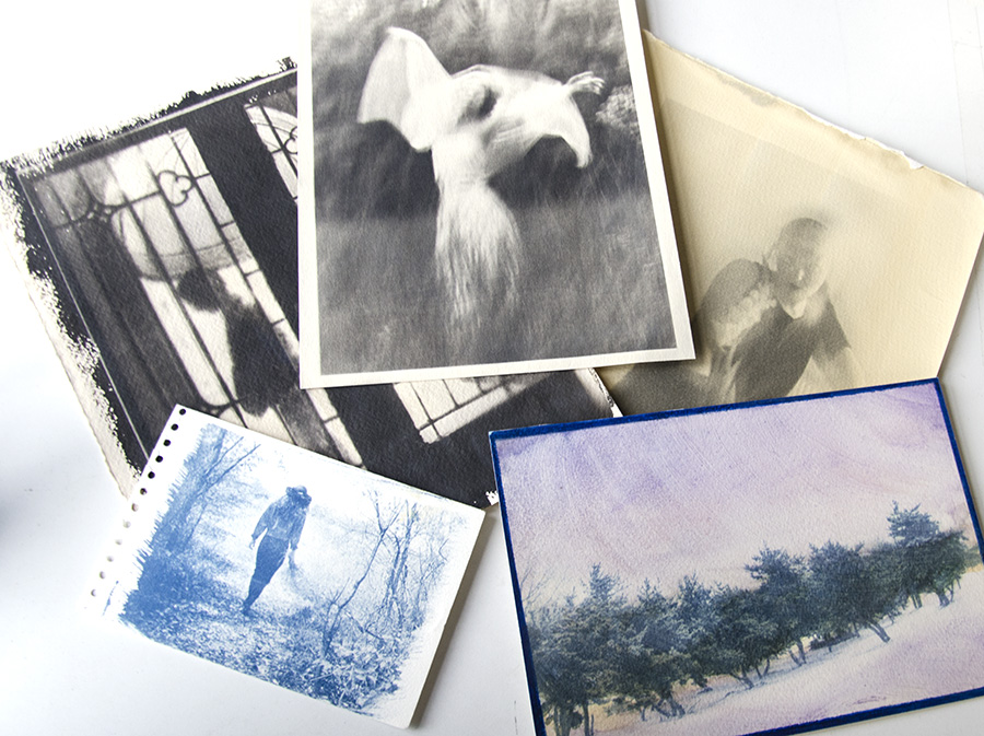 A few different types of Alternative Photo Prints: Bottom Prints are cyanotypes. Top from Left to Right: Palladium, Platinum & Liquid Light