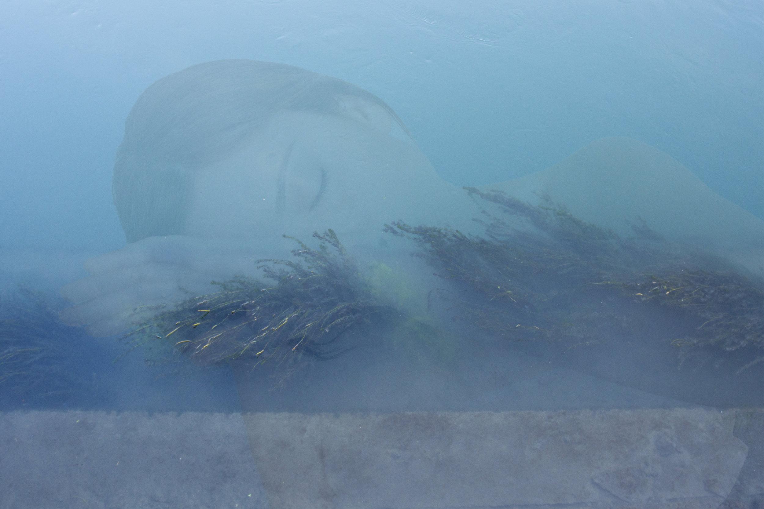 WATER_07.jpg