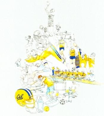 Cal-Sports-MM-Sketcth2.jpg