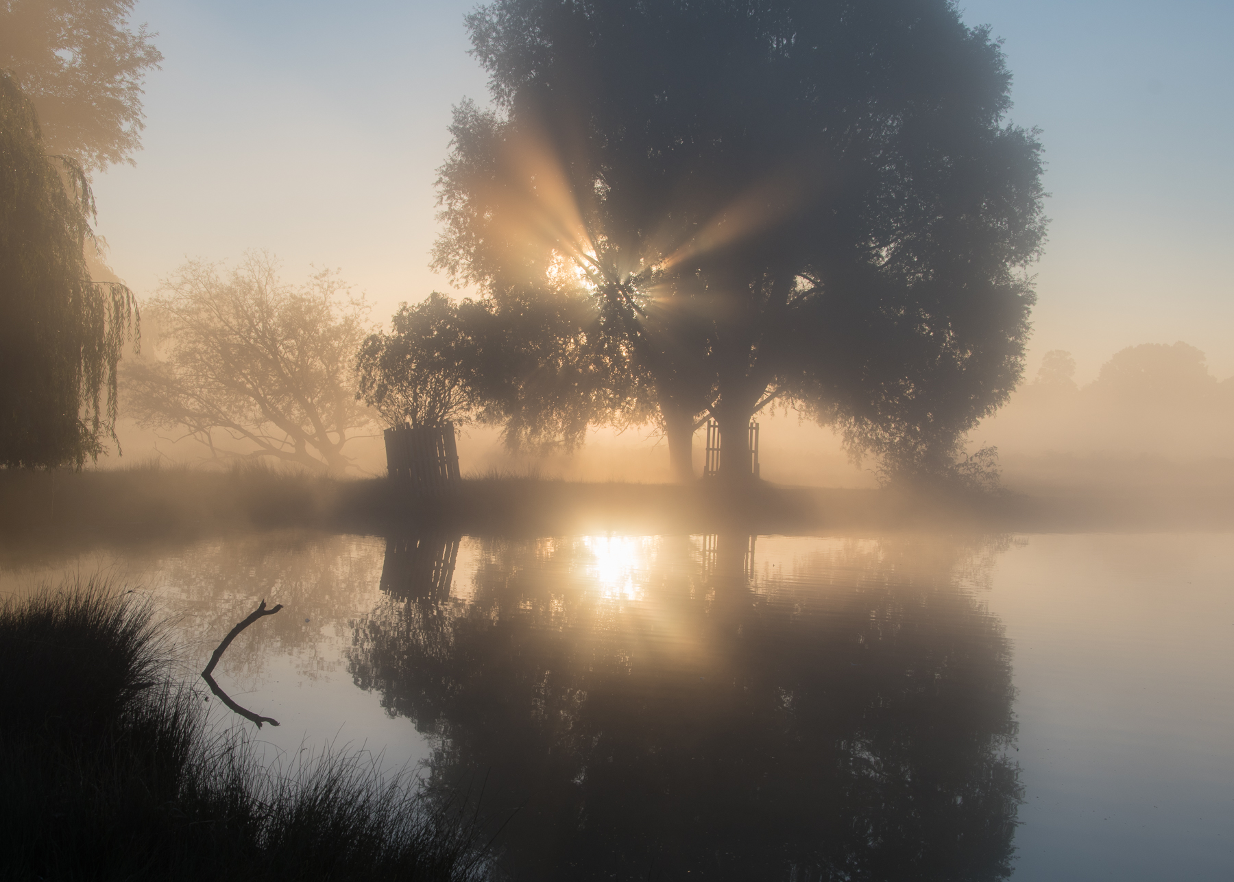mist1 (1 of 1).jpg