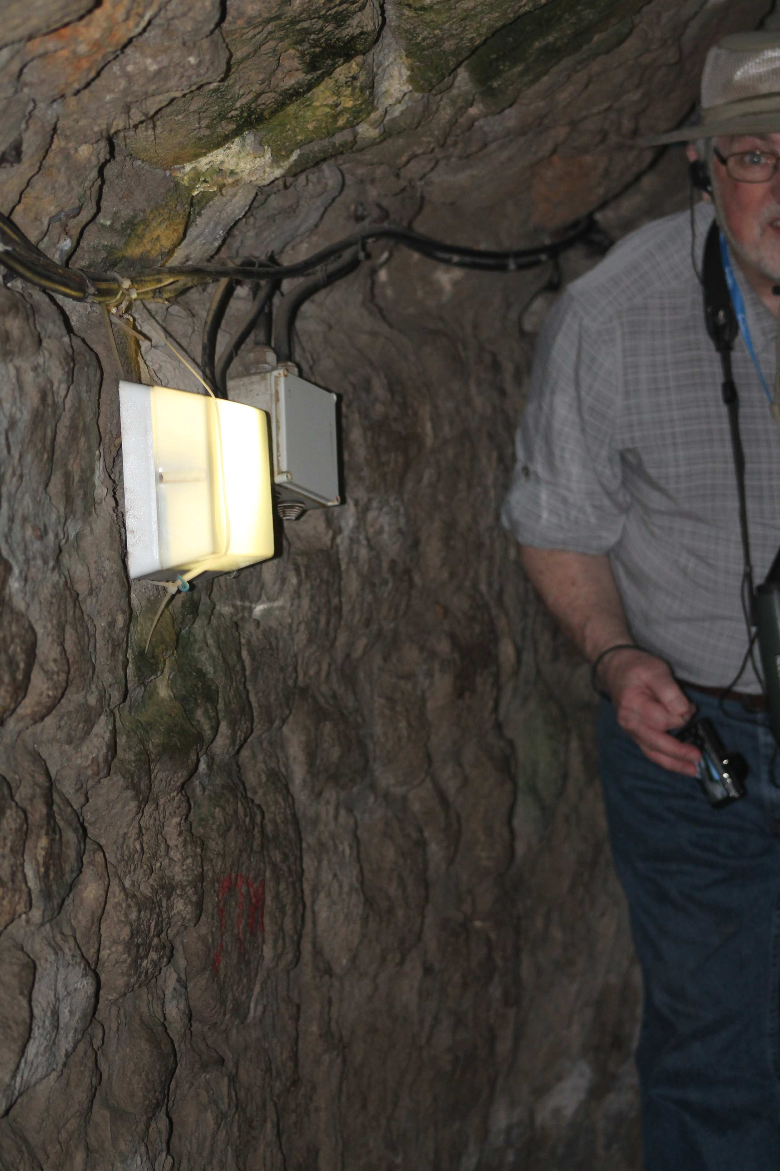 Marshall following me through the tunnels of the fortress in Akko.