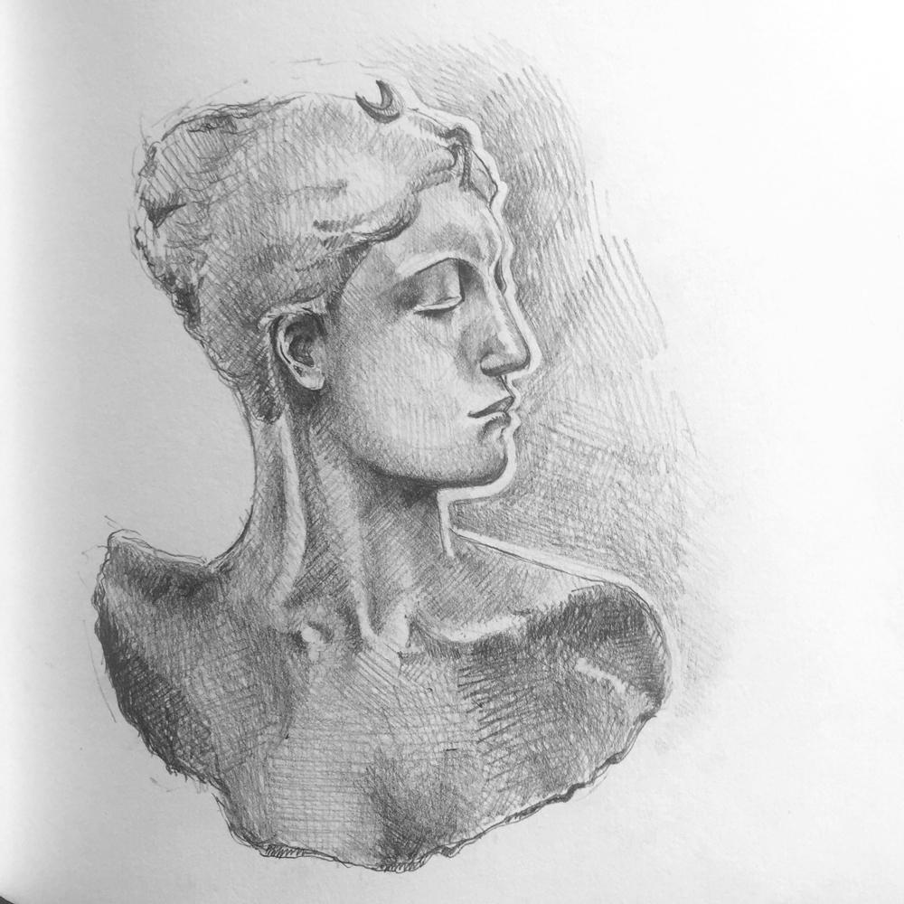 Diana-Sketch.jpg