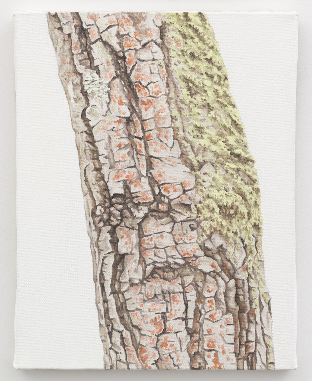 """Trunk No. 6,  2013,  oil on canvas 8 7/8"""" x 6 7/8"""""""
