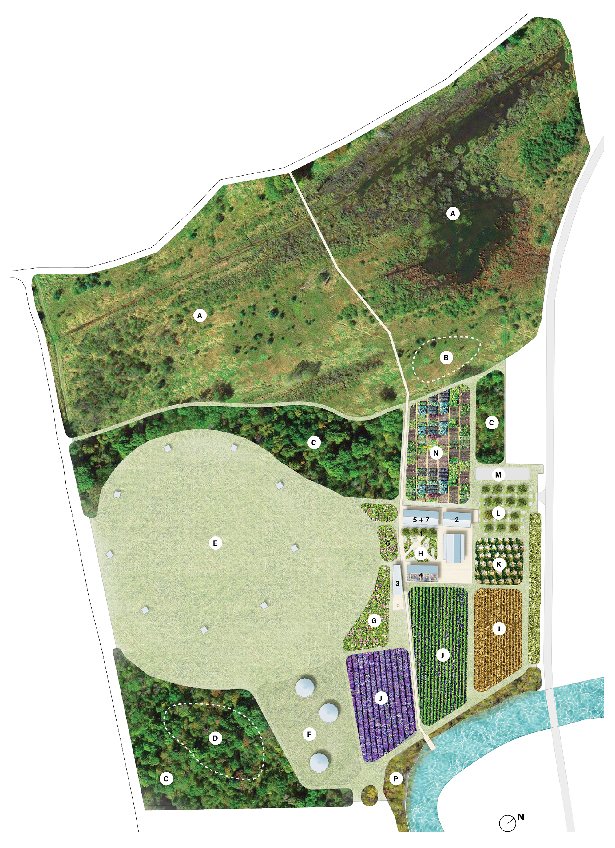 Site Plan Overall.png