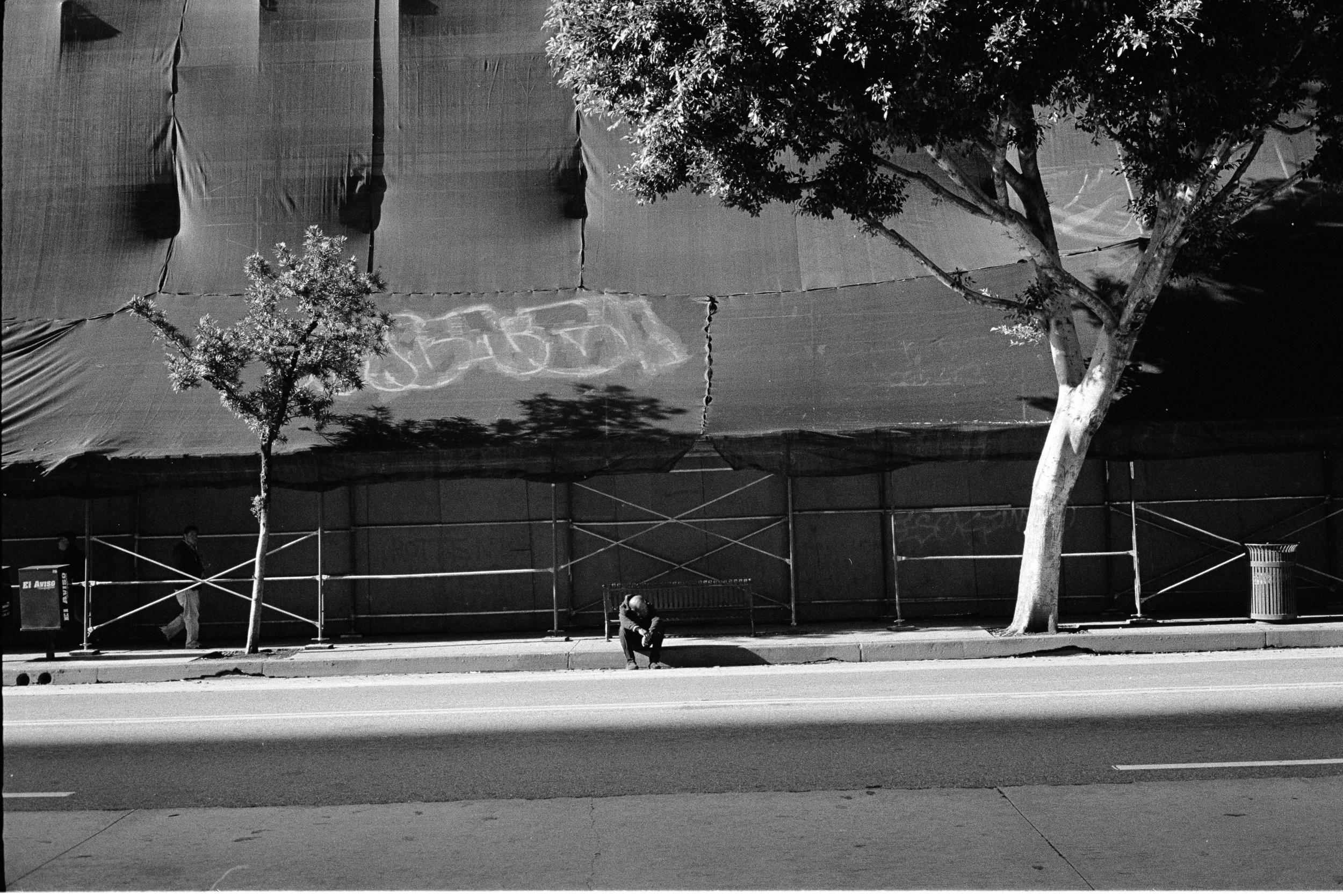 Curb Sit Tarp Tree Building copy.jpg