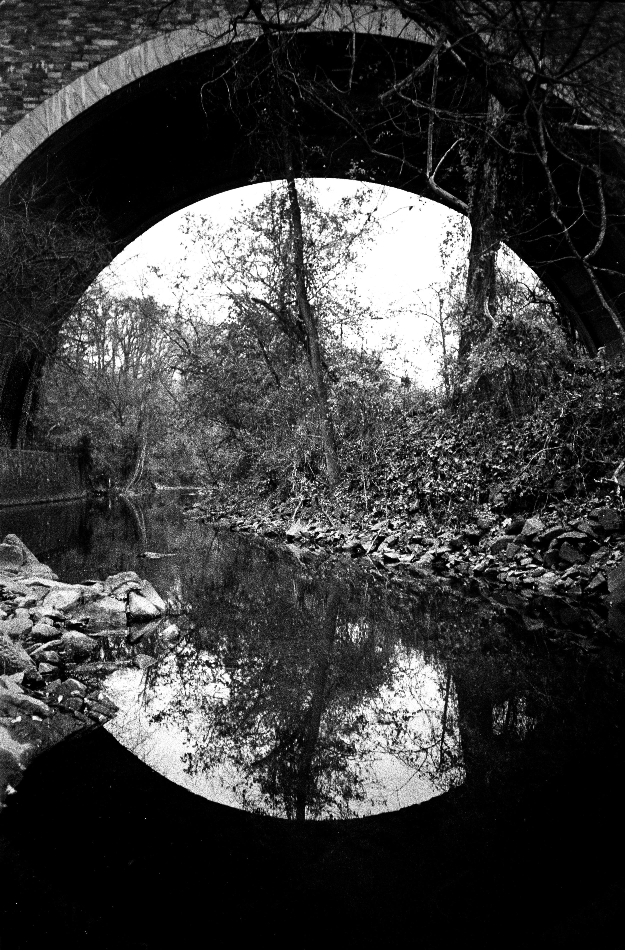 DC Down the rabit hole river copy.jpg