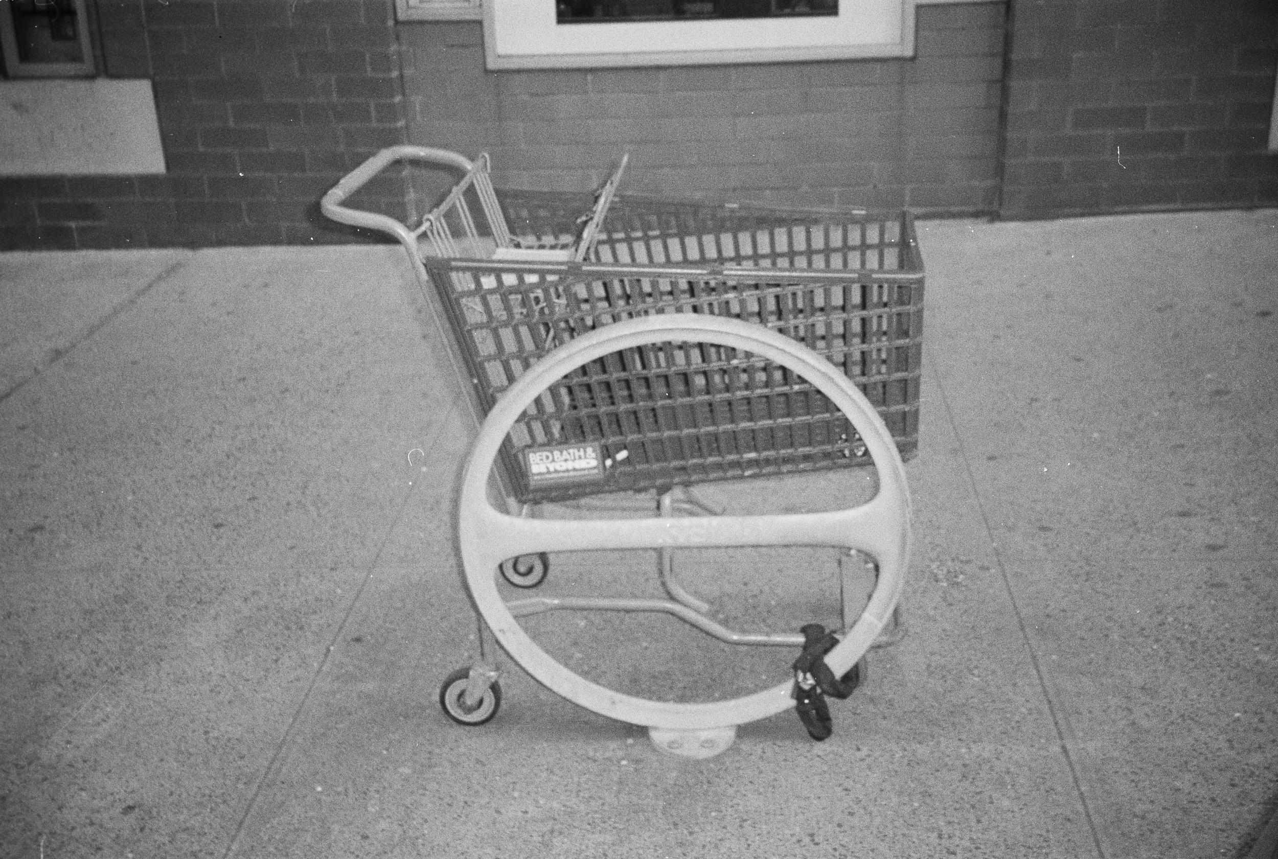 ShoppingCartandCircle copy.jpg