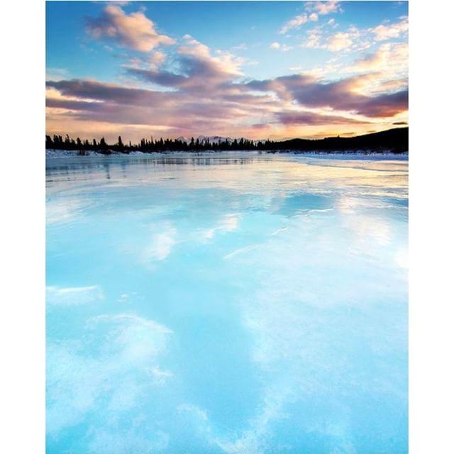 If you haven't explored the northwest corner of northern BC, we highly recommend it!  #AtlinBC #travelnorthernbc #explorebc Photo: @manukeggenhoff