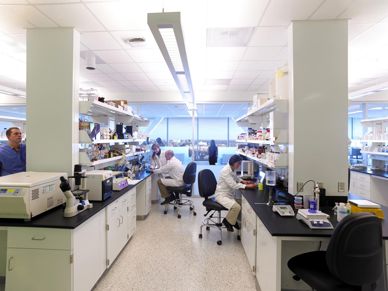 GVI Research Area.jpg