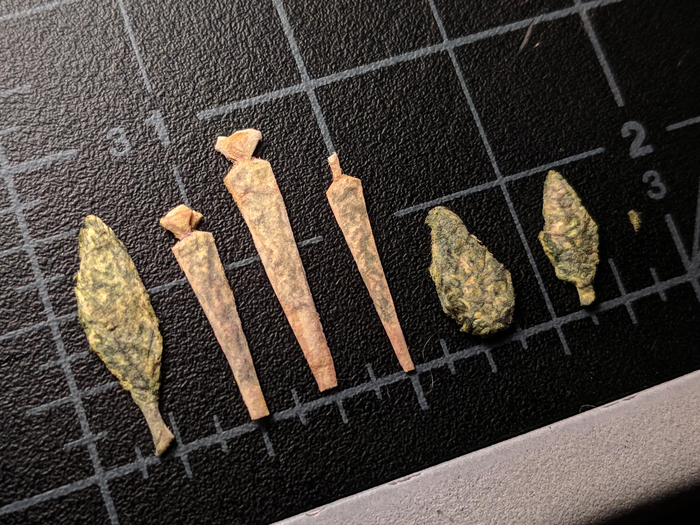 weed+line+1.jpg