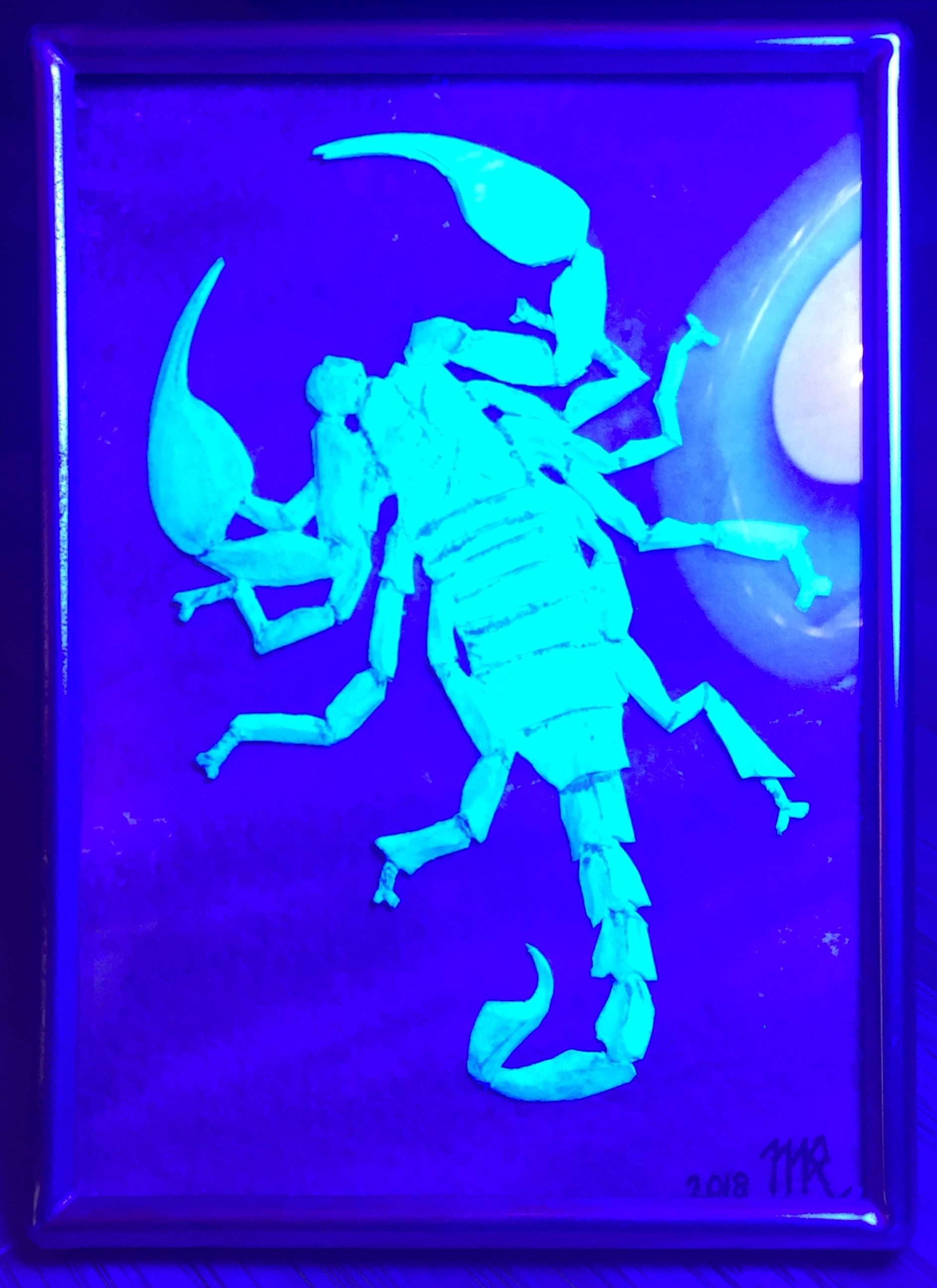 scorpion black light.png