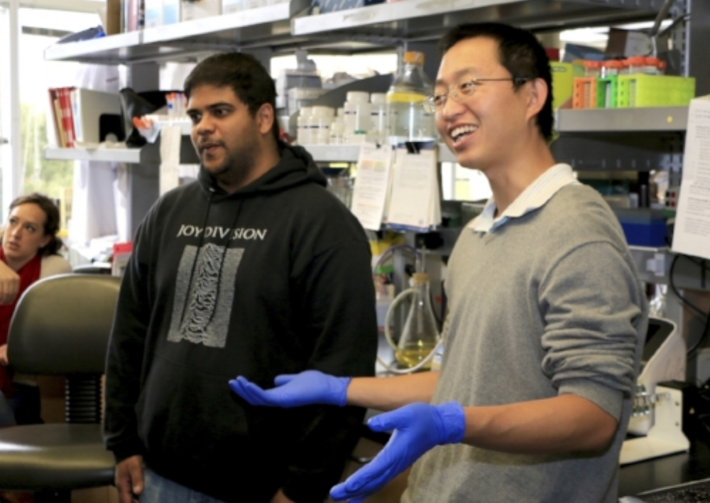 Yunhai and Gautham discussing science