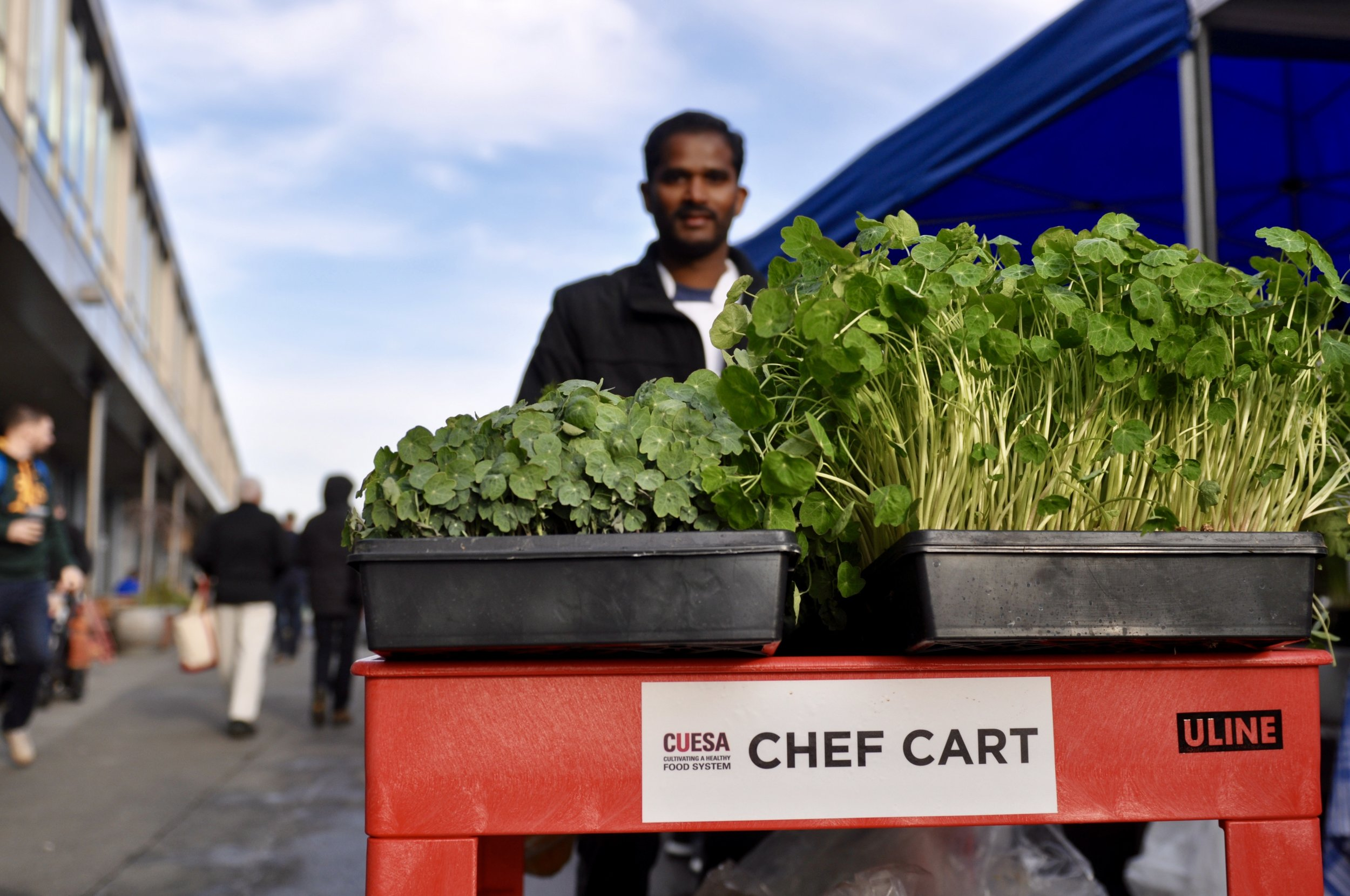 Dosa Chef Kumar goes to the farmer's market on a regular basis to incorporate seasonal ingredients on the restaurant's menu.