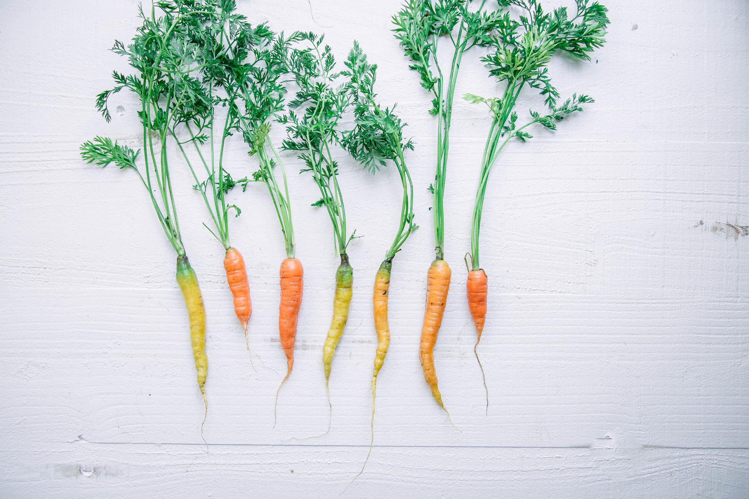 Baby carrots