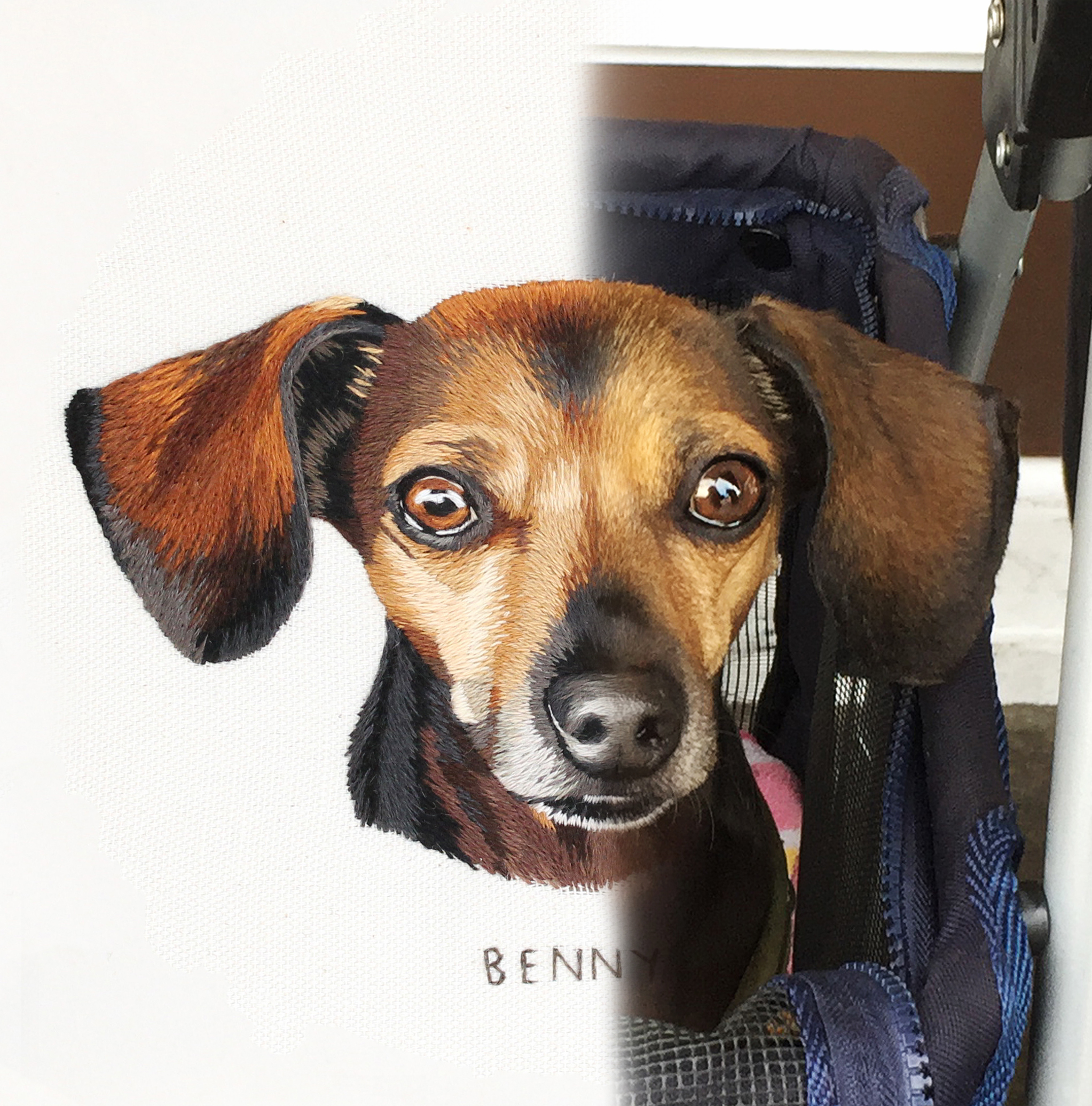 Benny_custom_pet_portrait_threadpainting_needlepainting_silkshading_embroidery_by_emillie_ferris_.jpg