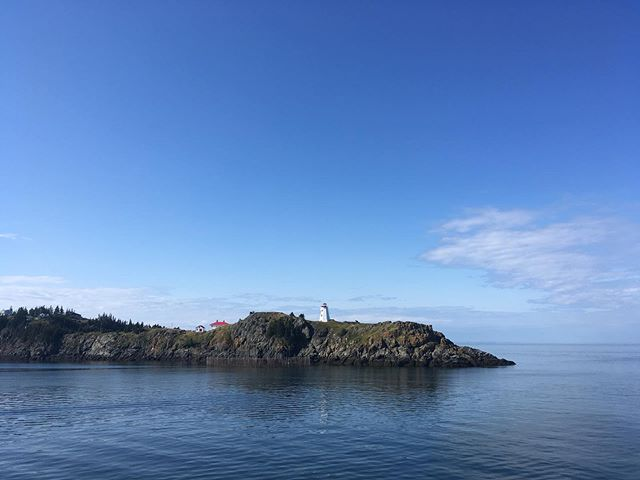 what a place!! Grand Manan/summers end is the remedy to a great but busy summer