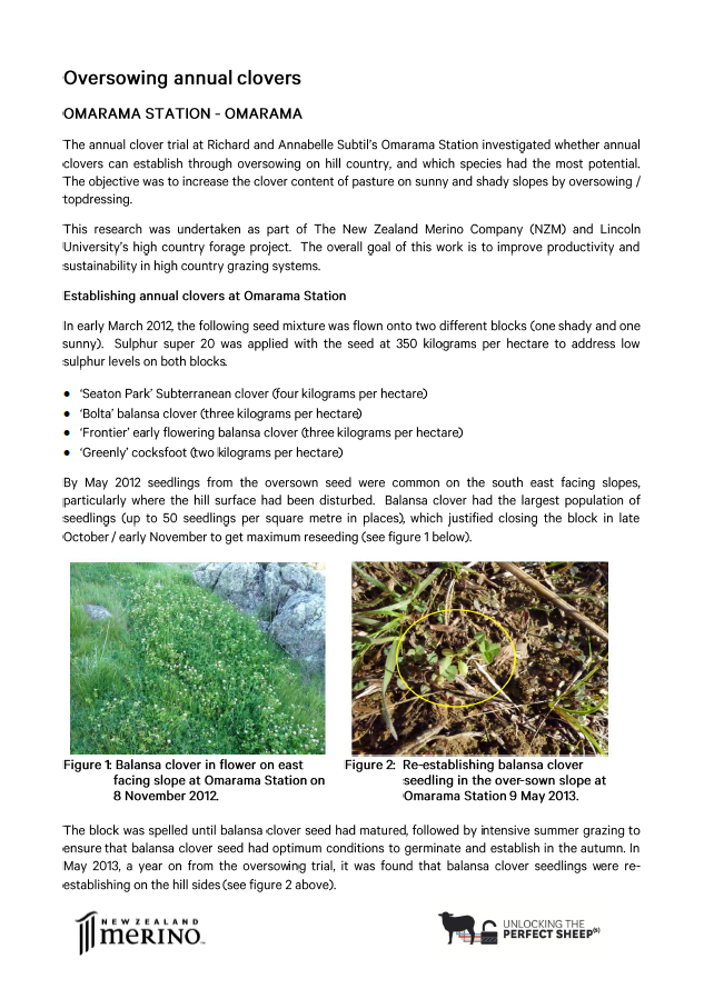 Click for more information about the annual clover trial at Omarama Station.