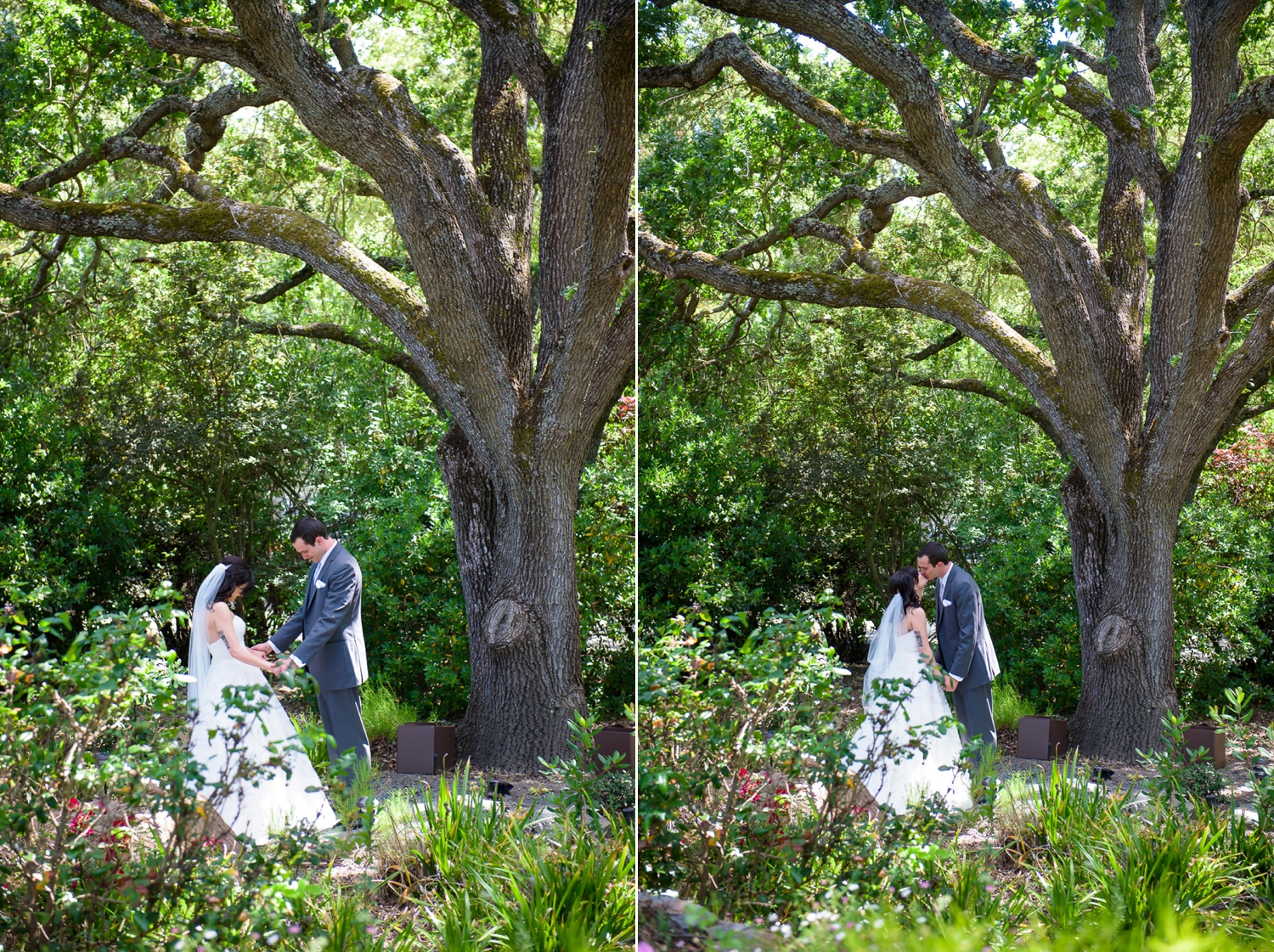 Danville backyard wedding
