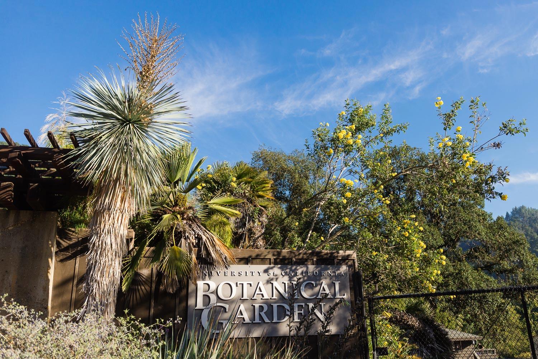 UC Berkeley Botanical garden entrance sign