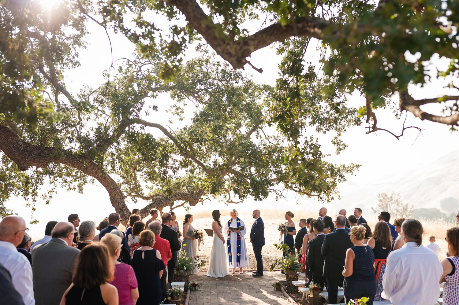 Wedding ceremony under an oak tree at sunset