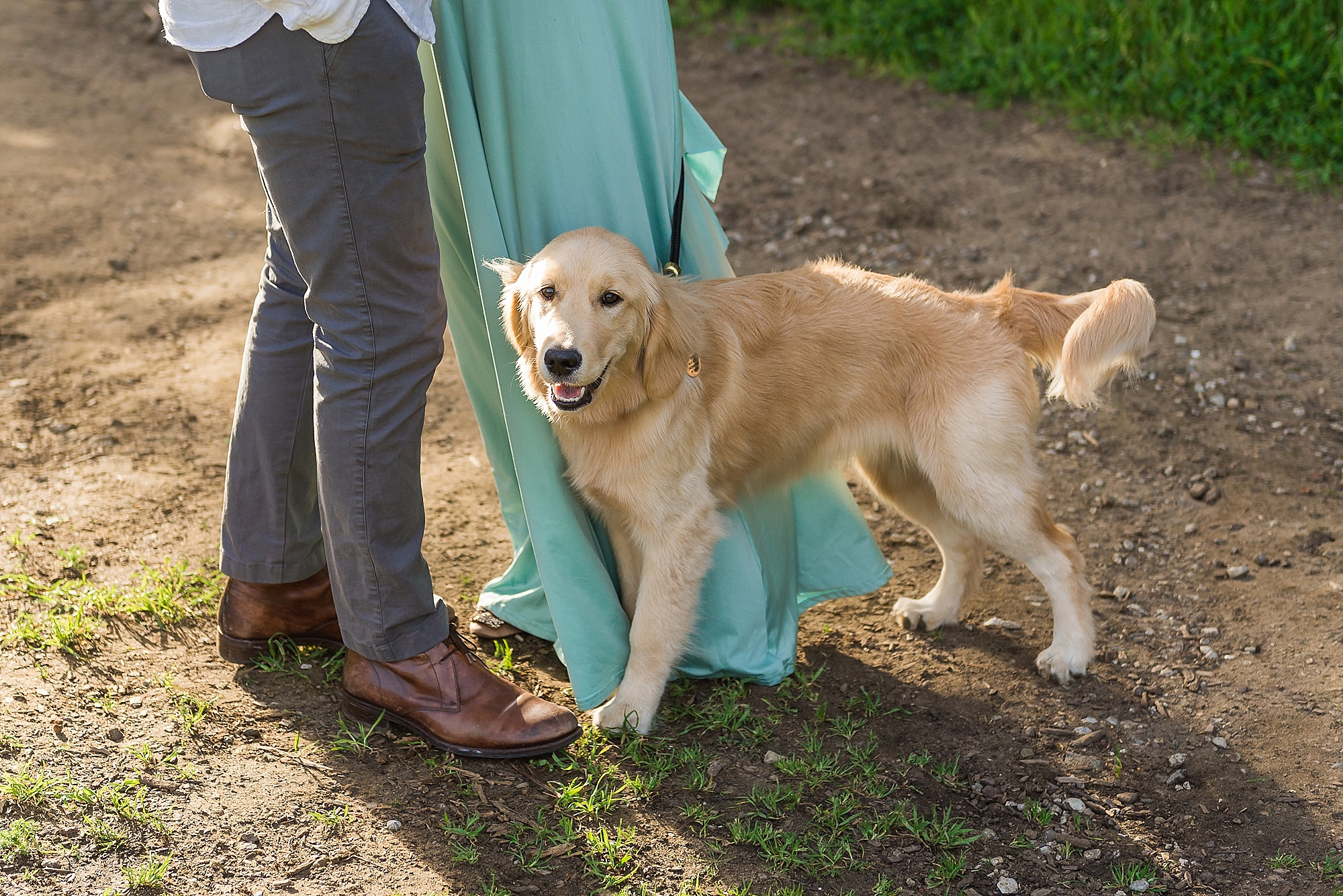 San Francisco maternity session with dog