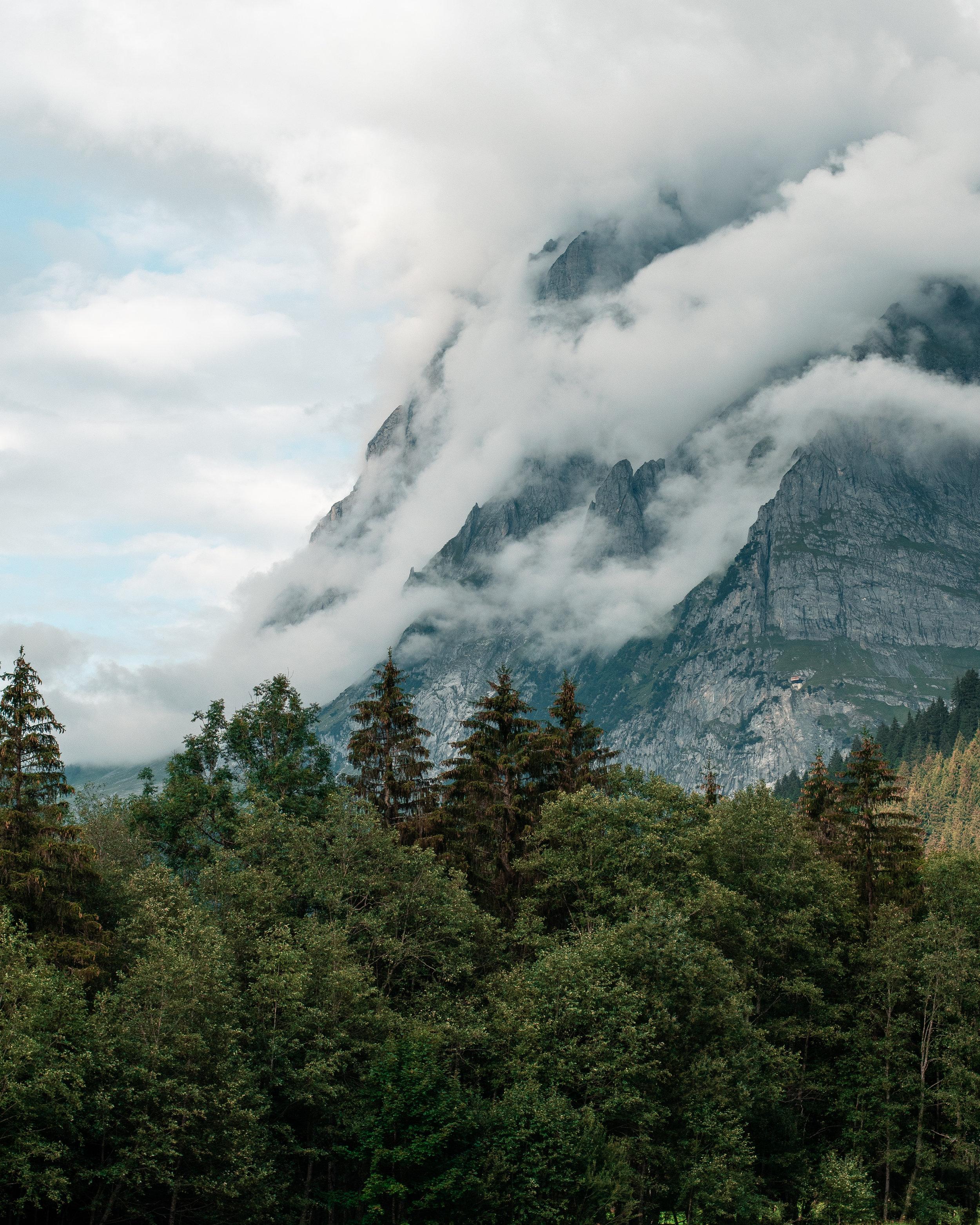 Copy of Grindelwald