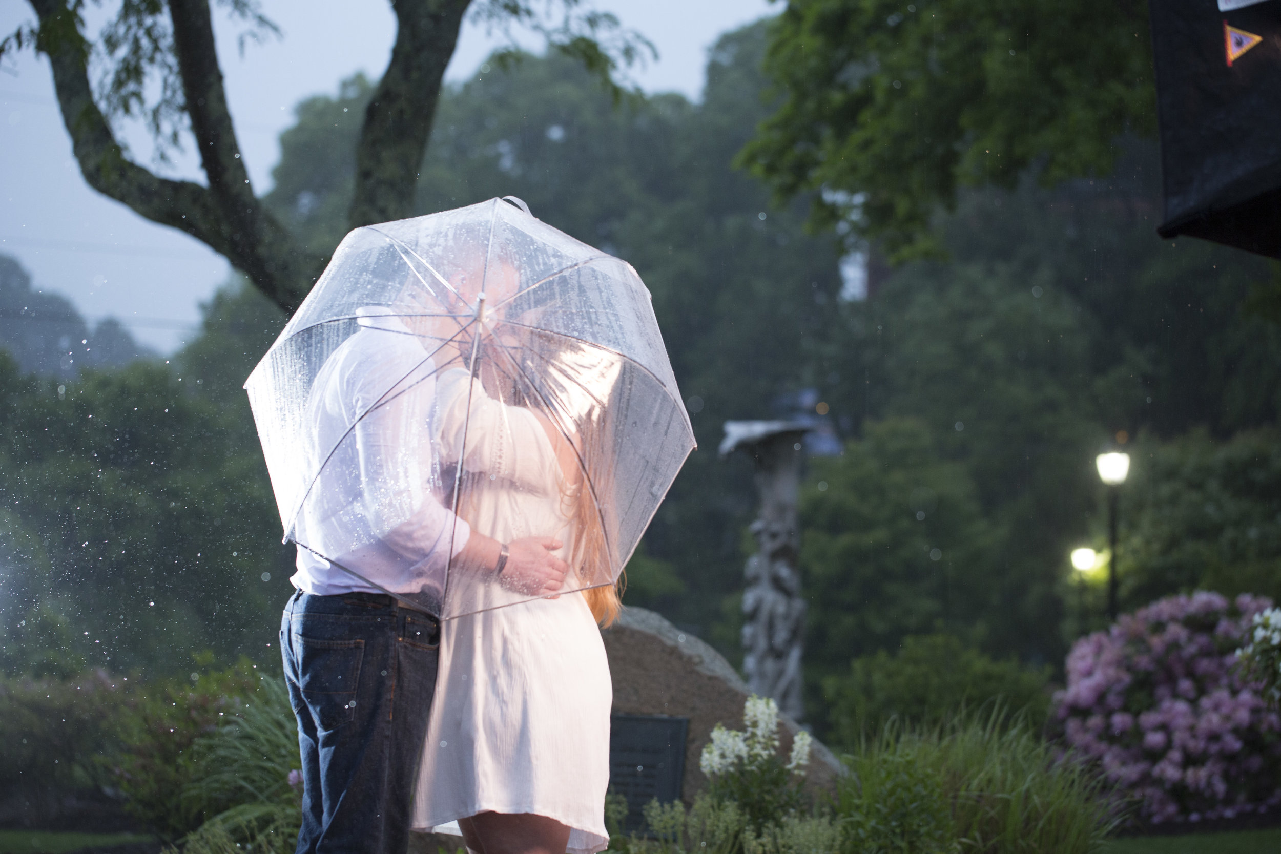 8C2A0164+Giovanni The Photographer Best Boston Engagement Photography Public Gardens - Commons WM100.jpg