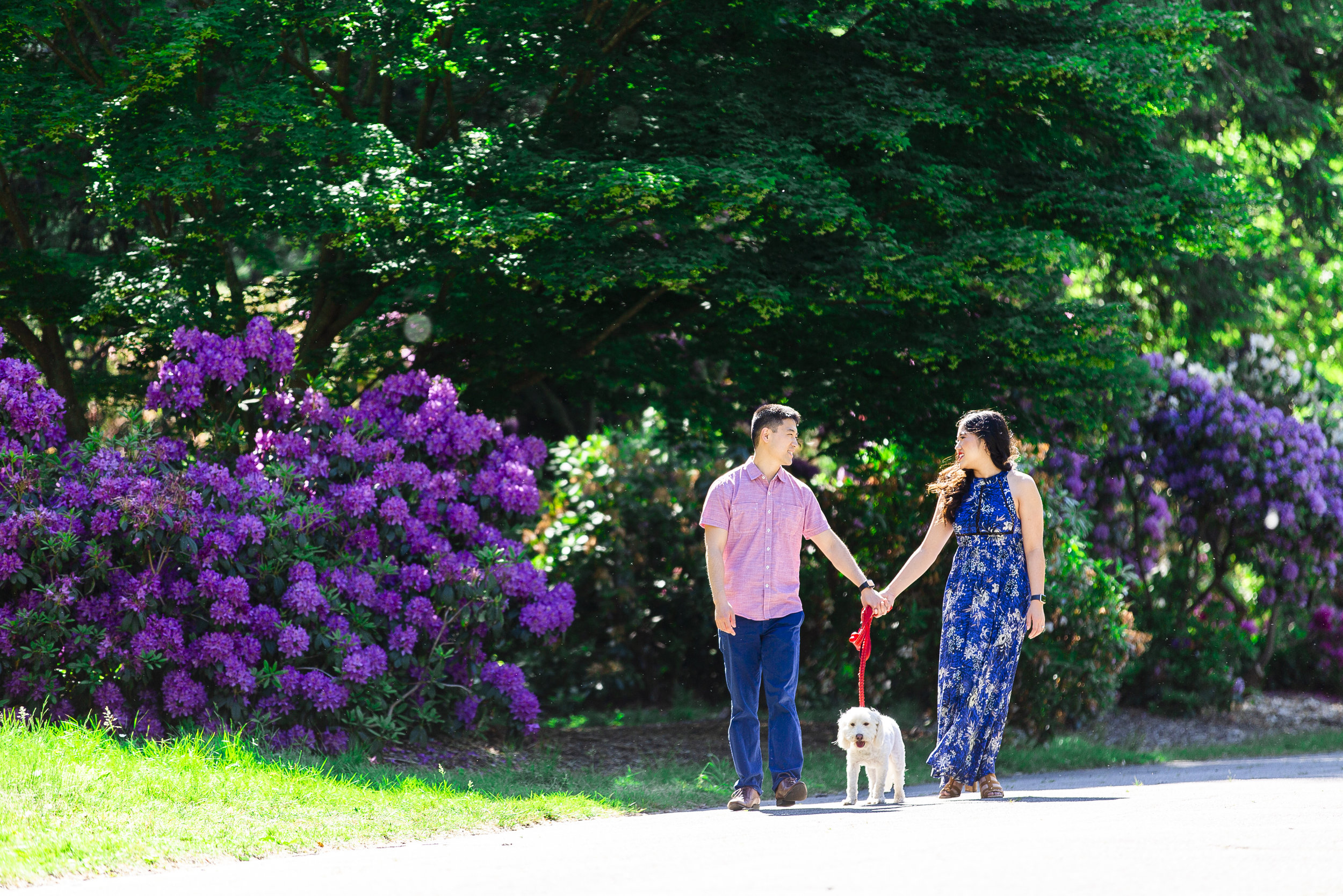 314A5799+Giovanni The Photographer+Best Boston Engagement Photography+Arnold Arboretum.jpg