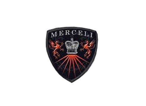 Speedtek_Wheels_Merceli.jpg