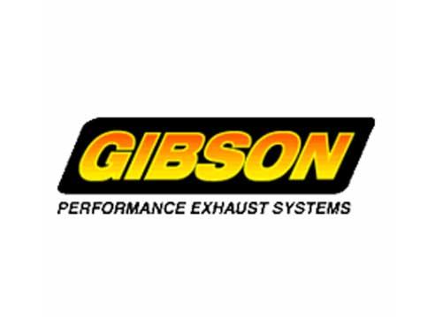 Speedtek_custom_parts_gibson.jpg