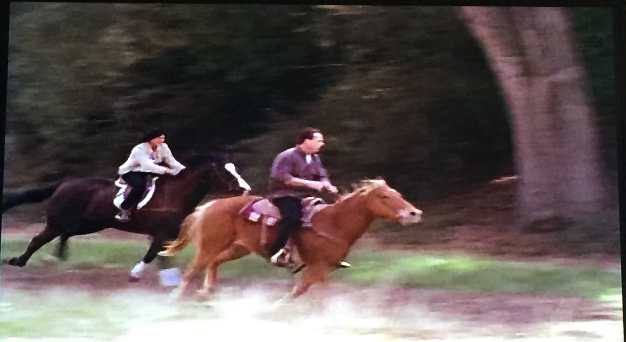 Horse stunt doubles.