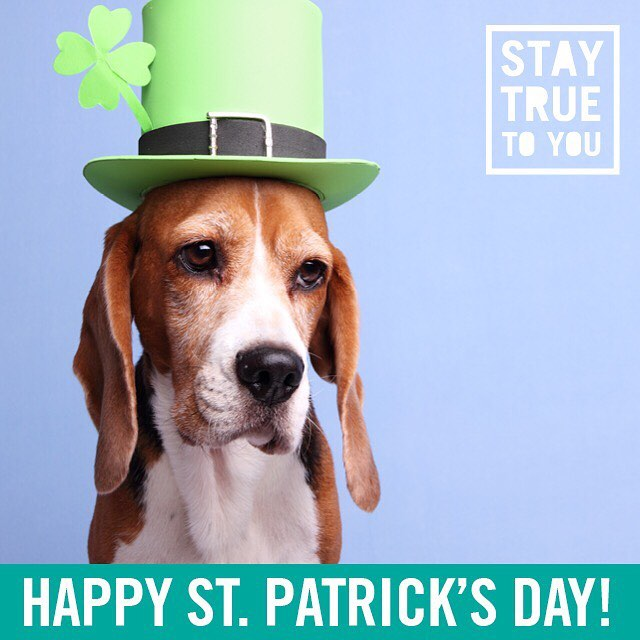 On St. Patrick's Day, everyone is Irish. #staytrueoregon