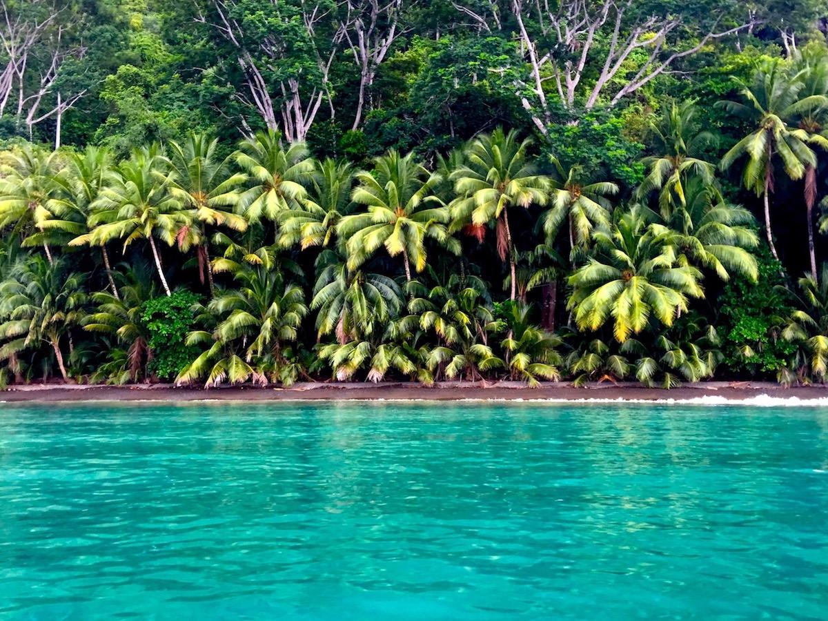 Playa San Josecito, Golfo Dulce, Costa Rica - our beach.jpg