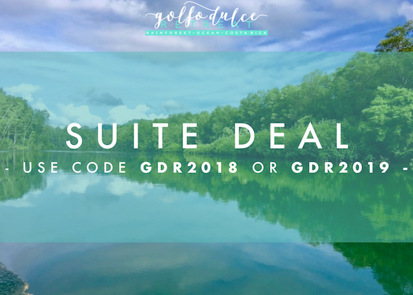 Suite Deal: up to 20% off the Cabina Suite rate - Stay four nights or longer in our fabulous Cabina Suite and save up to 20%.The offer is valid for stays up September 2019. In order to access this offer simply input the promotional code GDR2019 during the booking process.