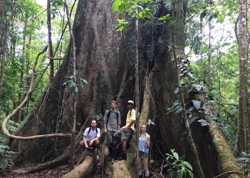 Rainforest Expeditions -