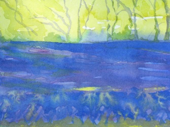 2.Enys-sunlight-on-bluebells_670.jpg