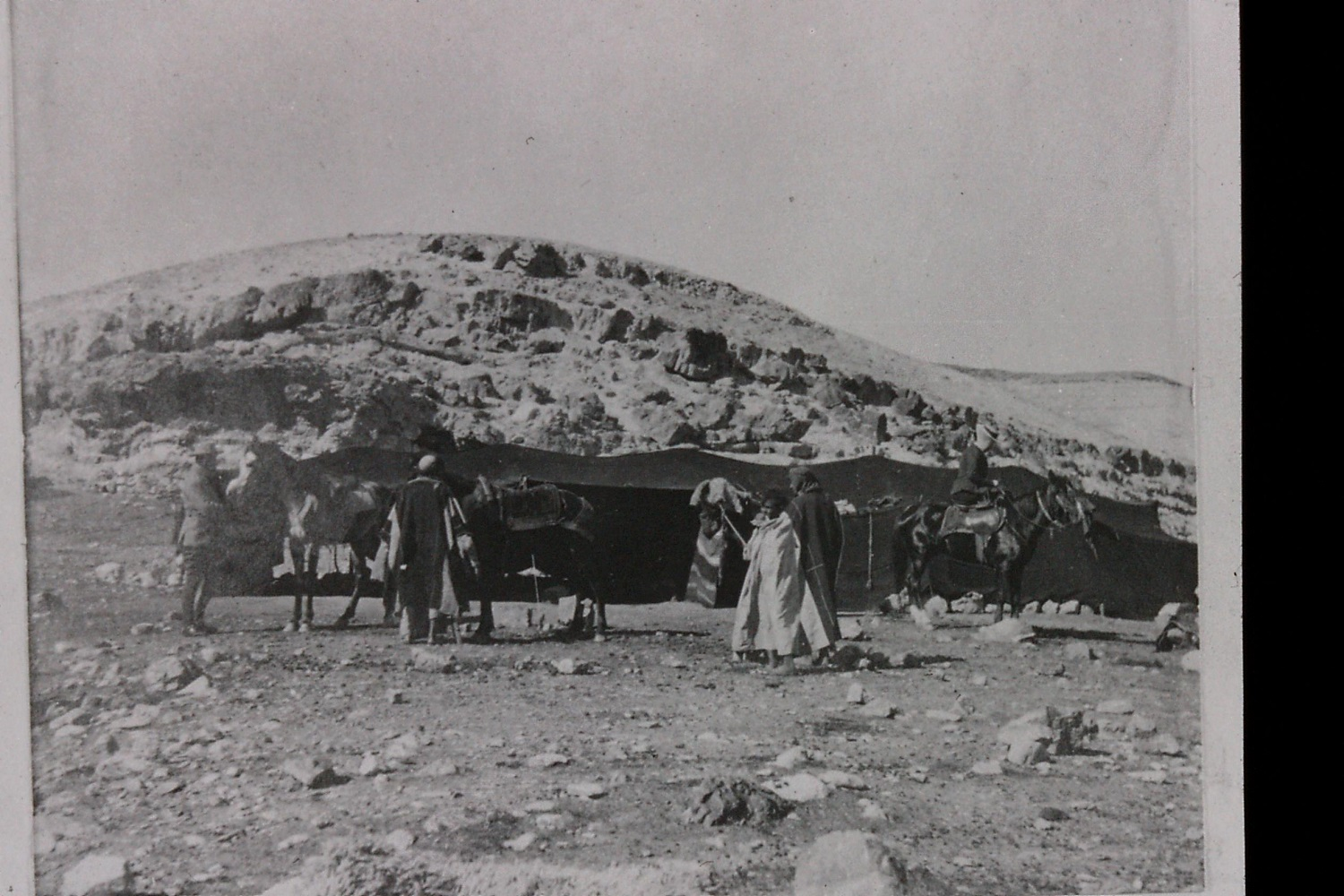 Gertrude Bell's photograph of Bedouin encampment, near Mar Sab  a, 1900. Catalogue number A474.