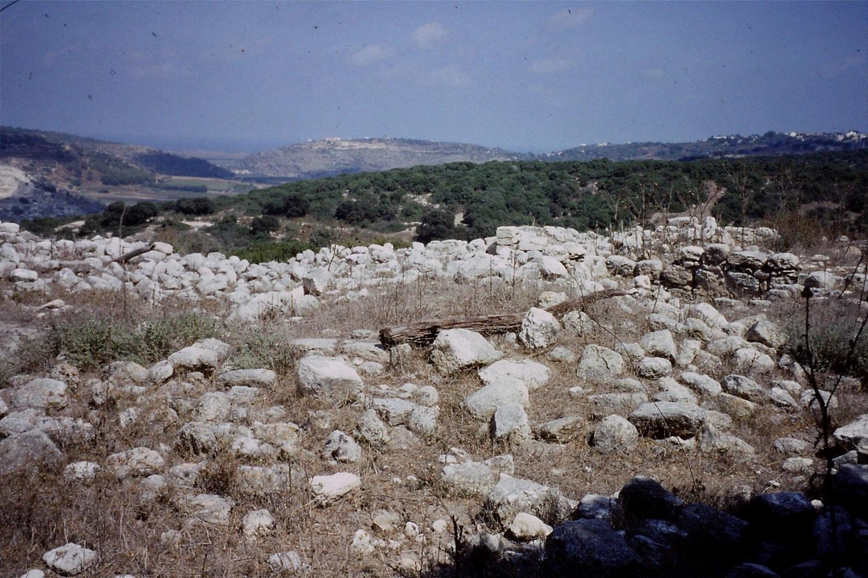 Roman farm, Carmel hills. Summer 1993. Credit: Eleanor Scott