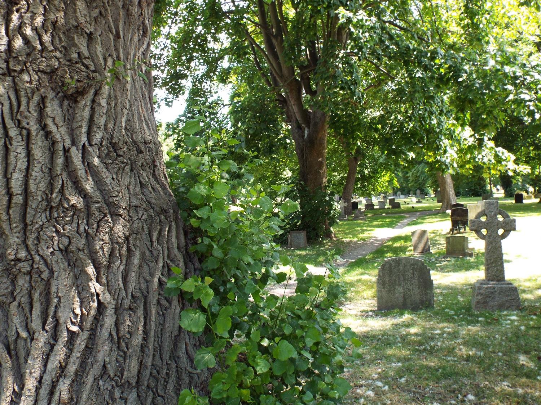 Kingston Cemetery, Fratton, Portsmouth