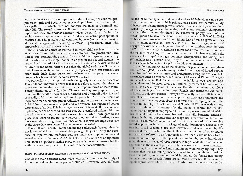 rape-paper-pp12-13.jpg
