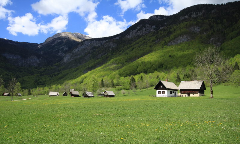 Small wooden cottages in a green paradise. Source: Bohinj.si